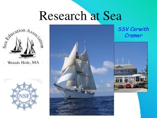 Research at Sea