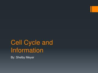 Cell Cycle and Information