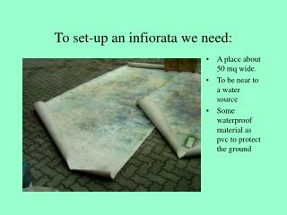 To set-up an infiorata we need: