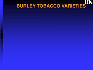 BURLEY TOBACCO VARIETIES