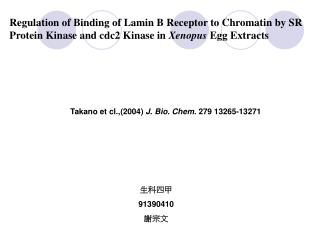 Regulation of Binding of Lamin B Receptor to Chromatin by SR