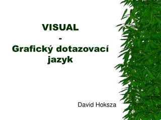 VISUAL - Grafický dotazovací  jazyk