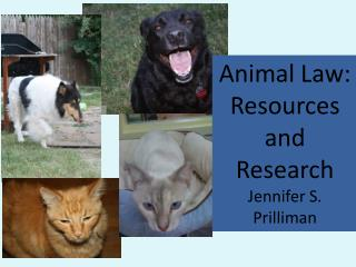 Animal Law:  Resources and  Research Jennifer S. Prilliman