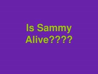 Is Sammy Alive????