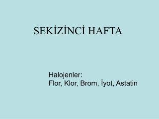 SEKİZİNCİ HAFTA