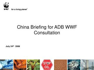 China Briefing for ADB WWF Consultation