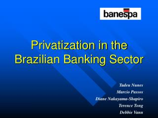 Privatization in the Brazilian Banking Sector