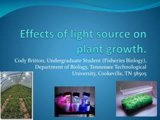Effects of light source on plant growth.