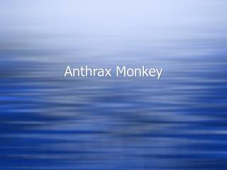Anthrax Monkey