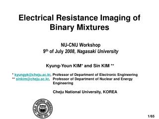 Electrical Resistance  Imaging of  Binary Mixtures