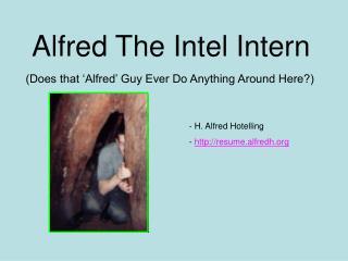 Alfred The Intel Intern