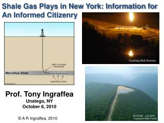 Shale Gas Plays in New York: Information for An Informed Citizenry