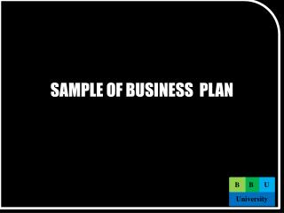 SAMPLE OF BUSINESS  PLAN