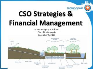 CSO Strategies & Financial Management
