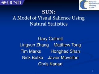 SUN:  A Model of Visual Salience Using Natural Statistics
