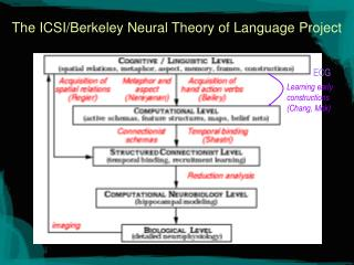 The ICSI/Berkeley Neural Theory of Language Project