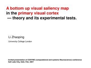 A bottom up visual saliency map in the  primary visual cortex