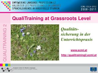 QualiTraining at Grassroots Level