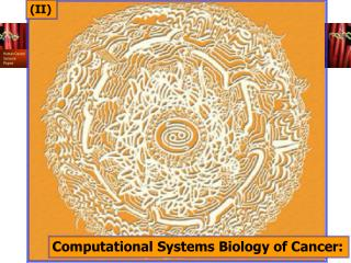 Computational Systems Biology of Cancer: