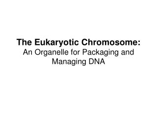 The Eukaryotic Chromosome: An Organelle for Packaging and Managing DNA