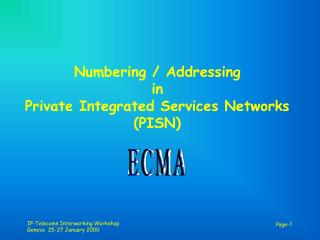 Numbering / Addressing in Private Integrated Services Networks (PISN)