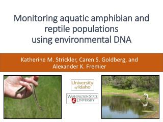 Monitoring aquatic amphibian and reptile populations  using  environmental  DNA