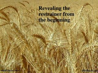 Revealing the restrainer from the beginning