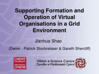 Supporting Formation and Operation of Virtual Organisations in a Grid Environment