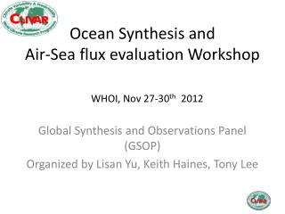 Ocean Synthesis and  Air-Sea flux evaluation Workshop