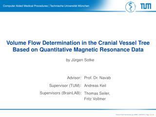 Volume Flow Determination in the Cranial Vessel Tree Based on Quantitative Magnetic Resonance Data