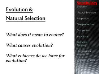 Evolution &  Natural Selection What does it mean to evolve? What causes evolution?