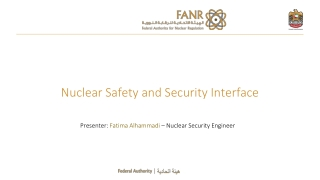Safety and Security Interface
