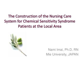 Nami Imai, Ph.D, RN Mie University, JAPAN