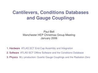 Cantilevers, Conditions Databases  and Gauge Couplings