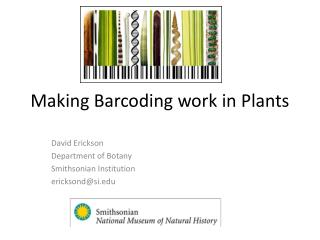 Making Barcoding work in Plants