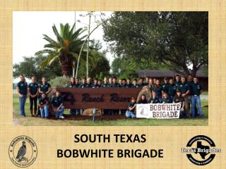SOUTH TEXAS BOBWHITE BRIGADE