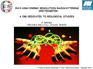 IN13 HIGH ENERGY RESOLUTION BACKSCATTERING SPECTROMETER: A CRG DEDICATED TO BIOLOGICAL STUDIES
