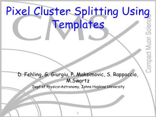Pixel Cluster Splitting Using Templates