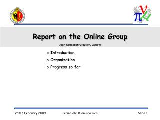 Report on the Online Group