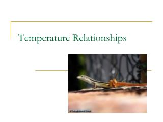 Temperature Relationships