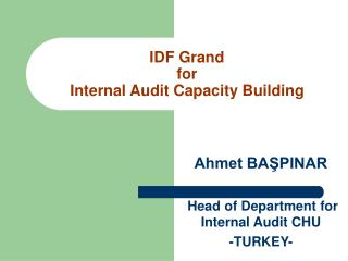 IDF Grand for Internal Audit Capacity Building