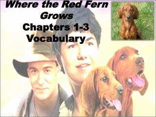 Where the Red Fern Grows Chapters 1-3 Vocabulary