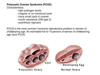 mare ovarian activity dissertation