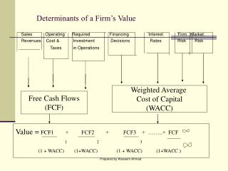 Determinants of a Firm's Value