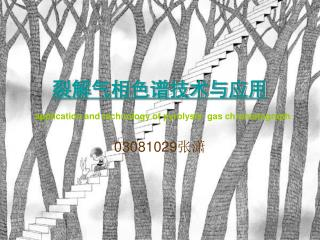 裂解气相色谱技术与应用 application and technology of pyrolysis  gas chromatograph