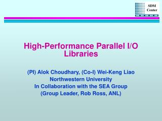 High-Performance Parallel I/O Libraries