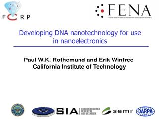 Developing DNA nanotechnology for use in nanoelectronics