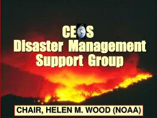 Disaster  Management Support  Group