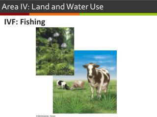 Area IV: Land and Water Use