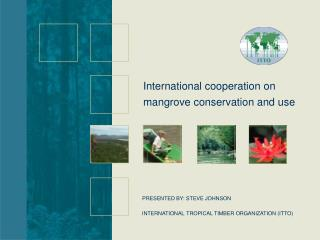 INTERNATIONAL TROPICAL TIMBER ORGANIZATION (ITTO)